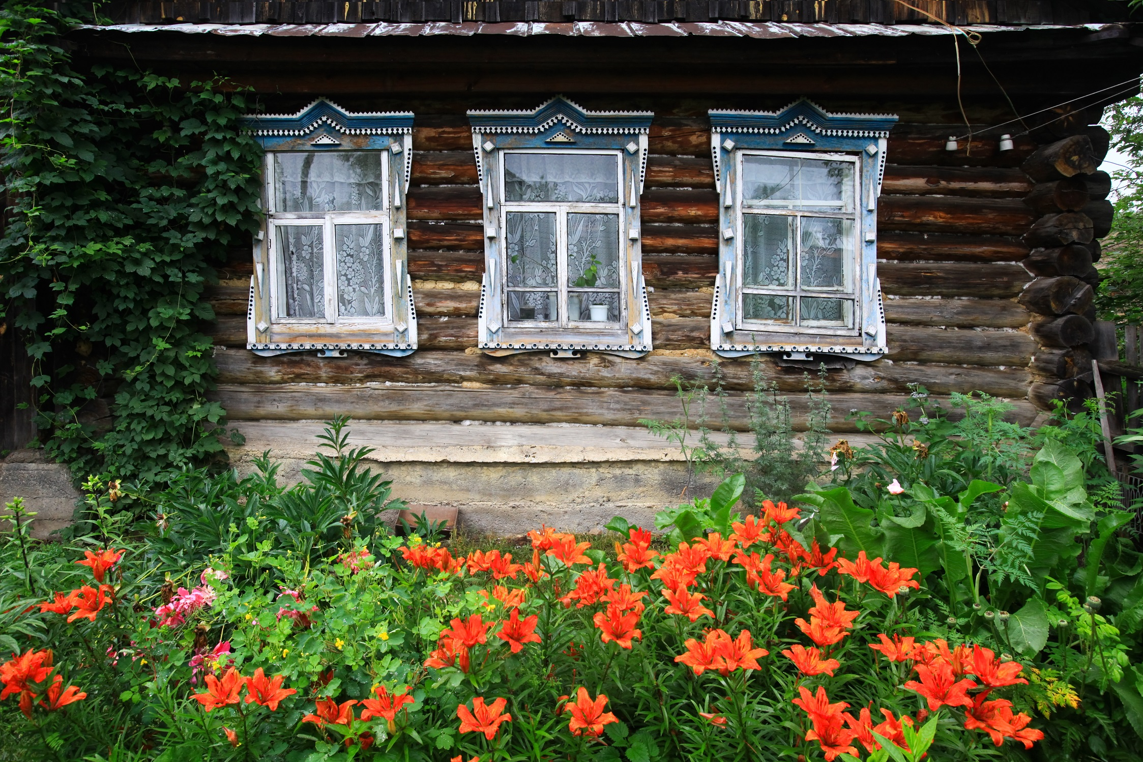 Wiejski ogród - jak urządzić ogród