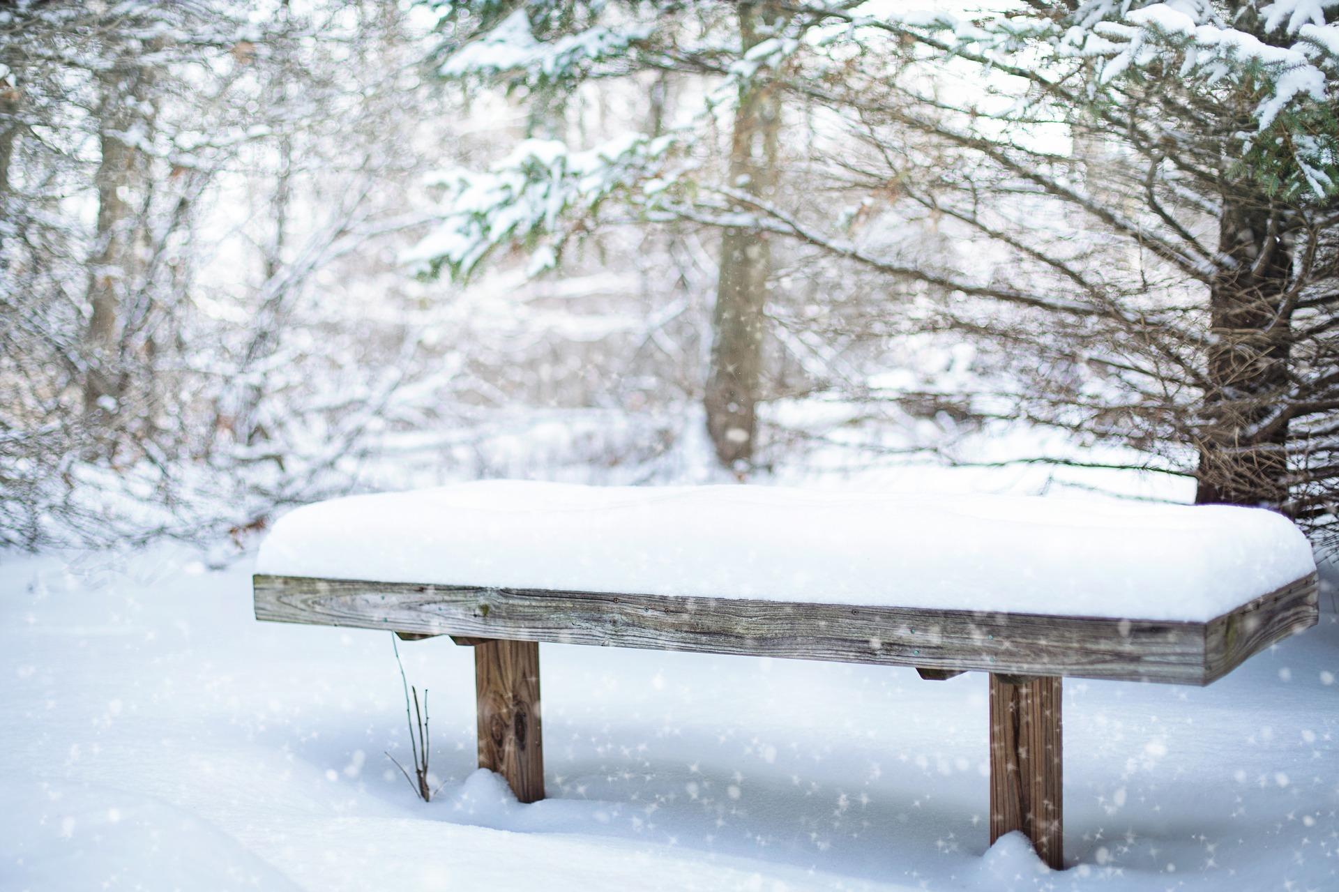 Jak zabezpieczyć drewno na zimę